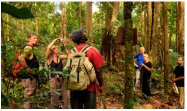 Jungle adventure in Suriname 2